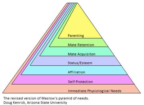 The revised version of Maslow's pyramid of needs.